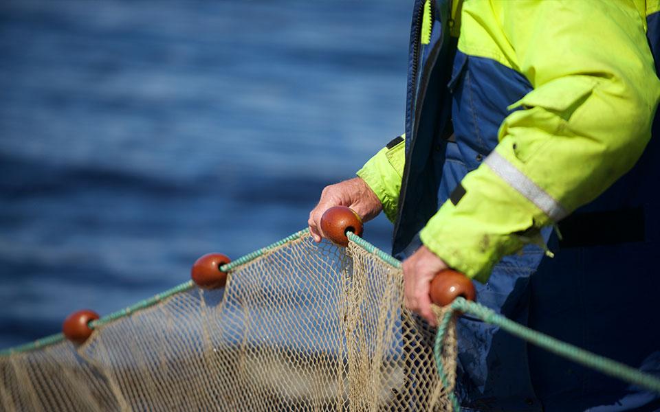 Skye and Lochalsh Rivers Trust internship opportunities