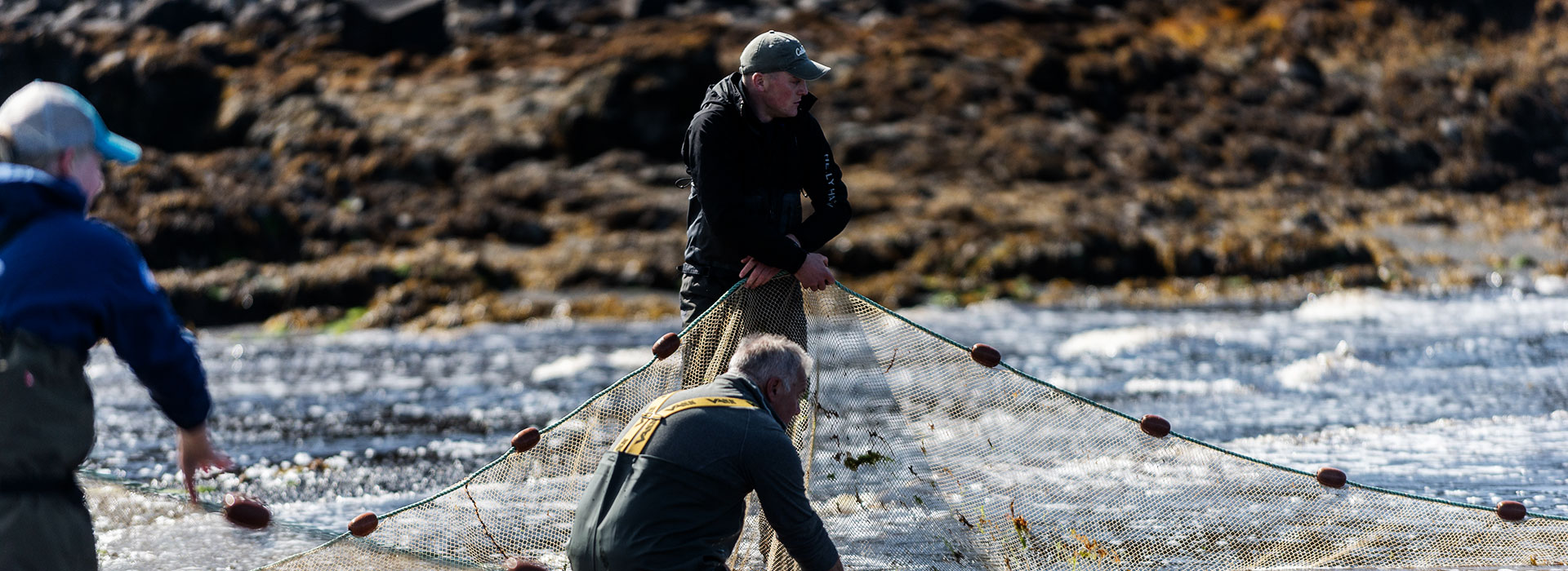 netting Brown Trout, Isle of Skye and Lochalsh rivers